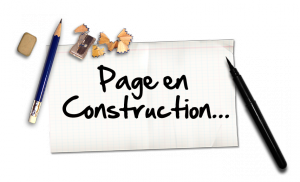 pageenconstruction__077887000_1706_10012013